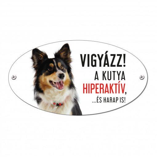 Vigyázz a kutya harap tábla alumíniumból BORDER COLLIE